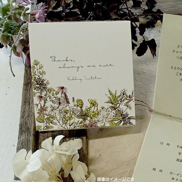 ナチュラルな絵柄デザインの結婚式招待状 !