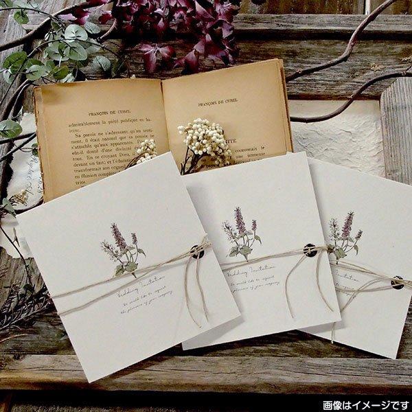 画像3: サラ 結婚式招待状(印刷込み)