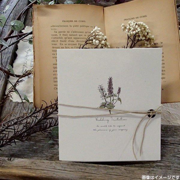 画像4: サラ 結婚式招待状(印刷込み)