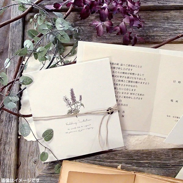 画像1: サラ 結婚式招待状(印刷込み)